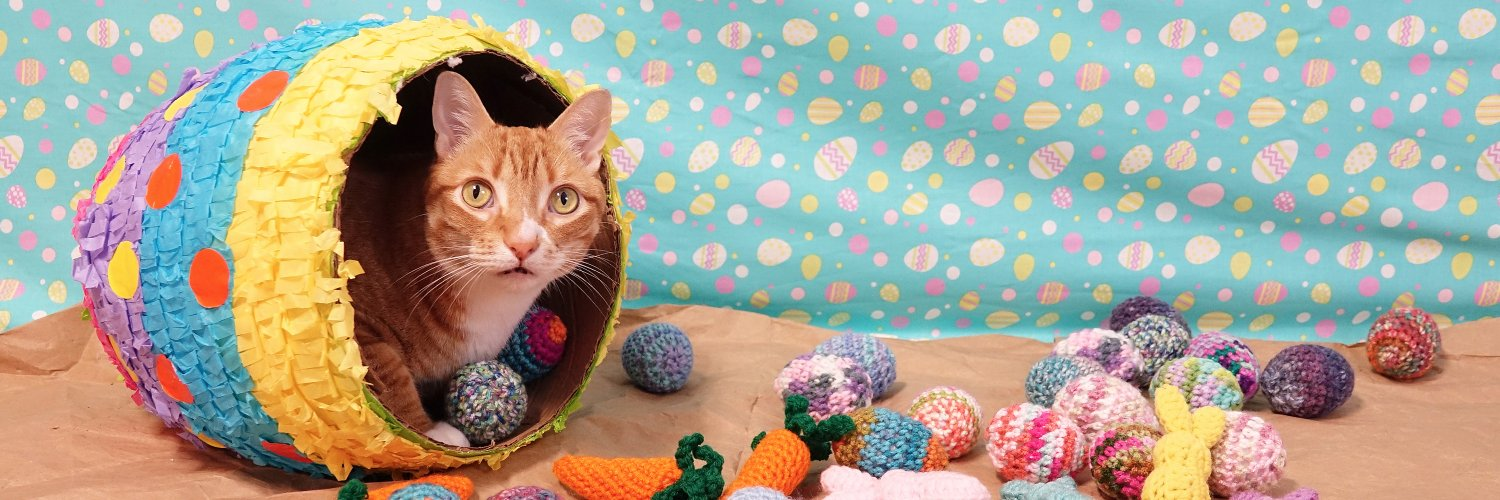 Follow Cole & Marmalade fur purr-fect posts and PAWSOME videos! :) #AdoptDontShop