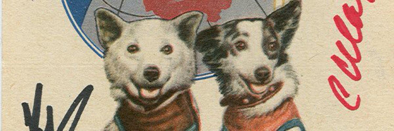 Днем рождения, открытки собаки белка и стрелка