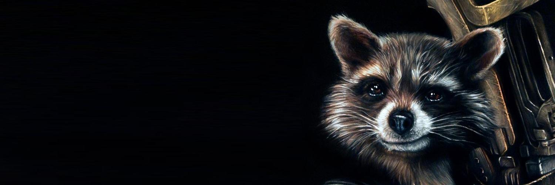картинка енота на черном фоне прием