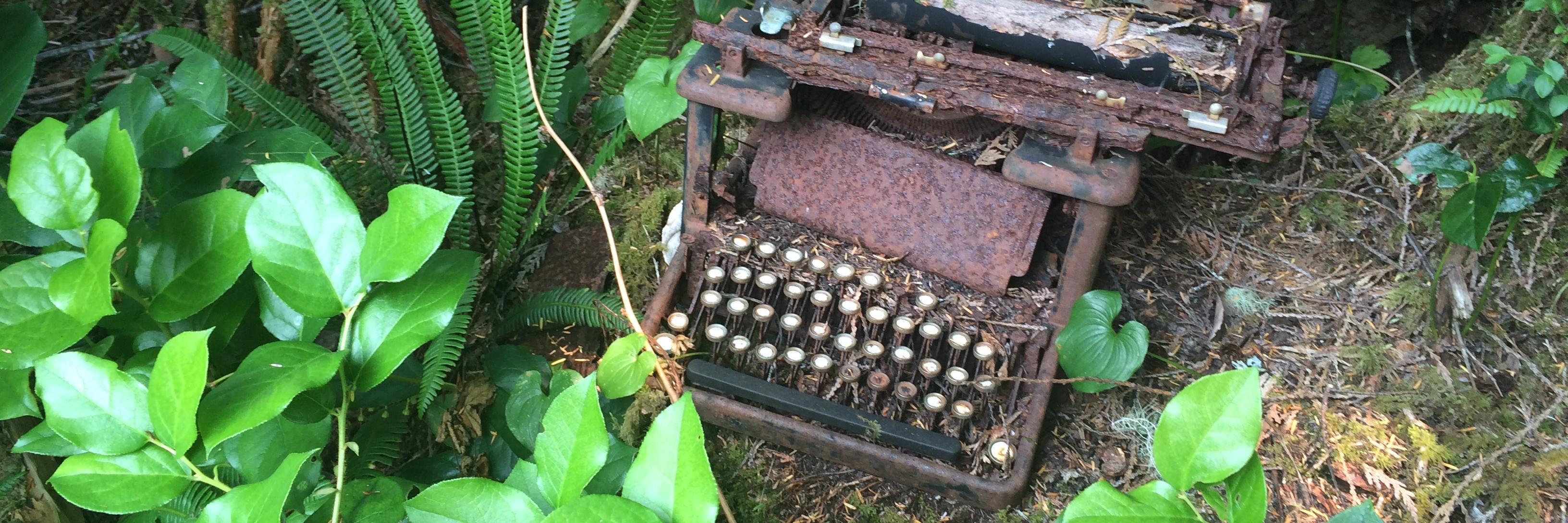 . Love letters #poemaday #365haiku #naturetherapy #naturetable #foundwhilewalking instagram.com/p/CBGg9JJpLB0/…