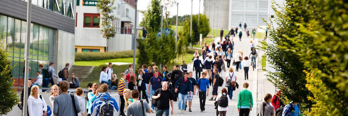 Universitetet i Stavanger's official Twitter account
