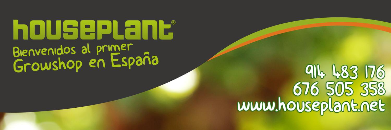 Houseplant houseplantgrow twitter for Www houseplant net