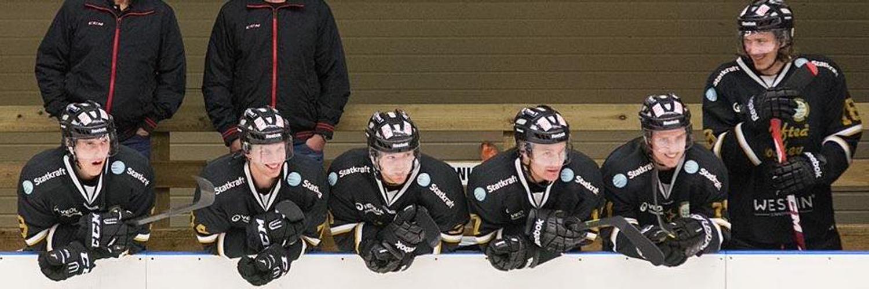 sollefteå hockey