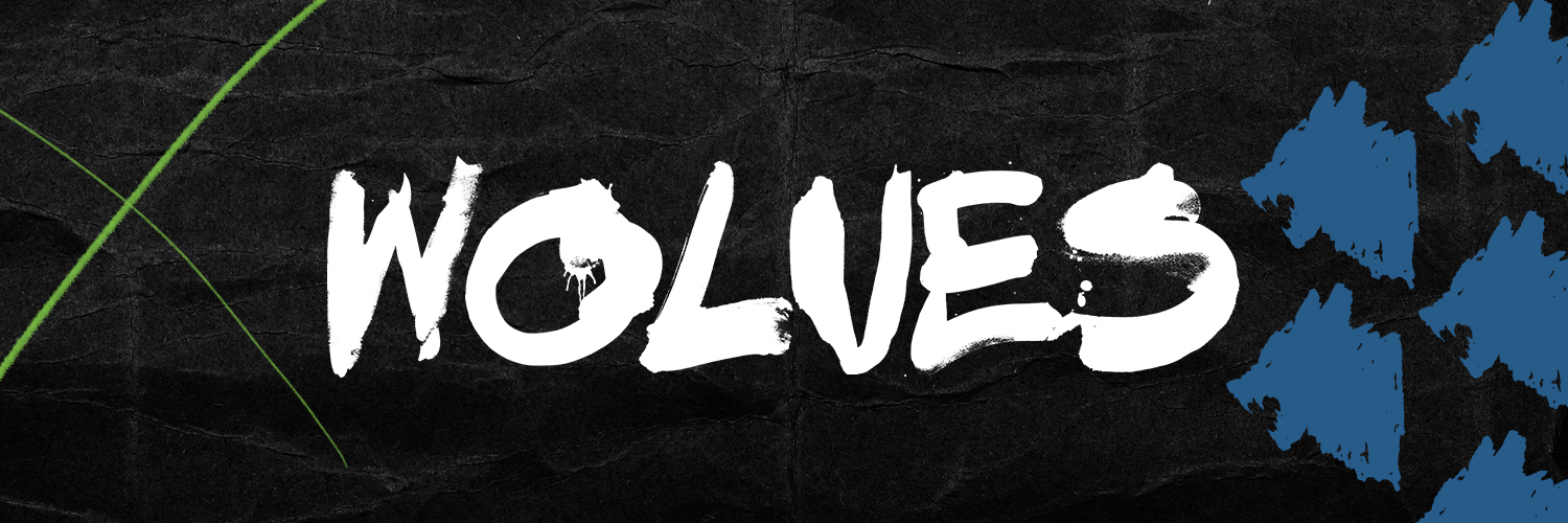 Iowa Wolves (@iawolves) on Twitter banner 2009-01-15 02:35:48