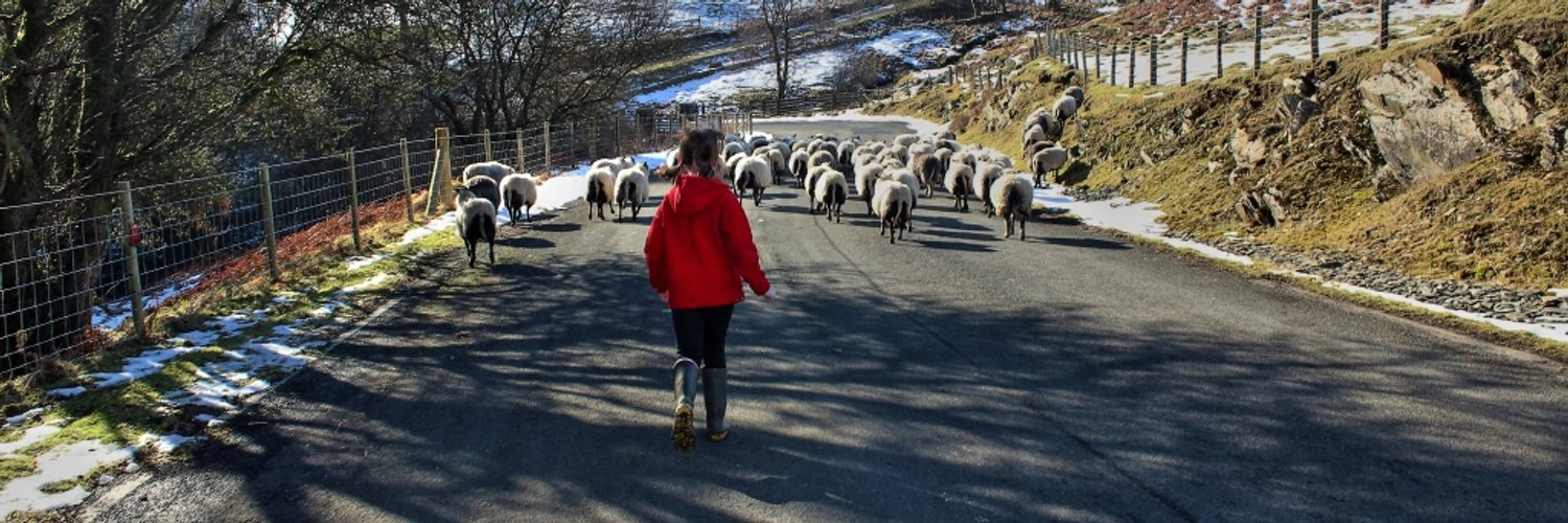 Lives in the Heart of the #ElanValley, farms, records the wildlife&history. Winner-Wales 2013 Nature Farming Award. Head Ranger turned free spirit!
