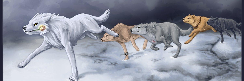 картинки волк уходит из стаи крыльев пустоты блюдо подходит как