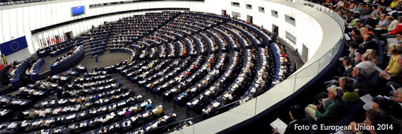 Caterina CHINNICI Eurodeputata del Parlamento Europeo