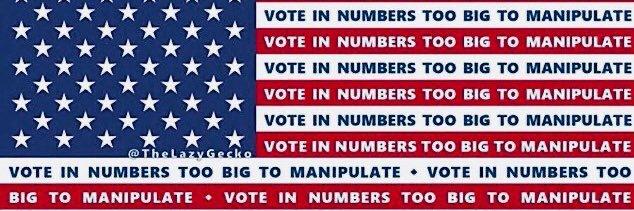 vote in numbers too big to manipulate vote in numbers too big to manipulate vote in numbers too big to manipulate v… https://t.co/zingOnOgp5