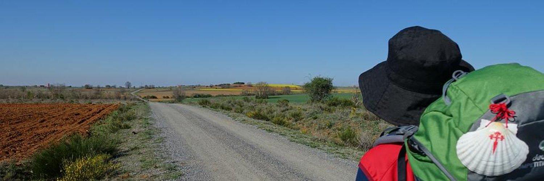 @CaminoSantiago3 camino primitivo completado .ayer cogi la compostela y el certificado de mis 315 km !!!! Y a por el proximo en cuanto pueda..el camino enganchaaa