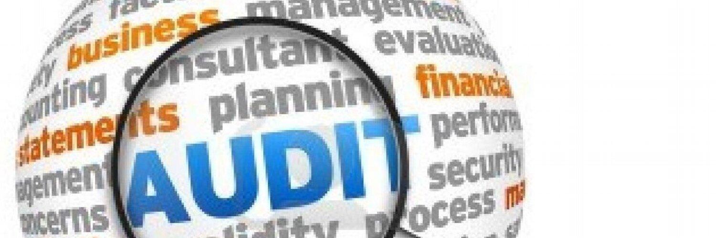 tesco organisation audit