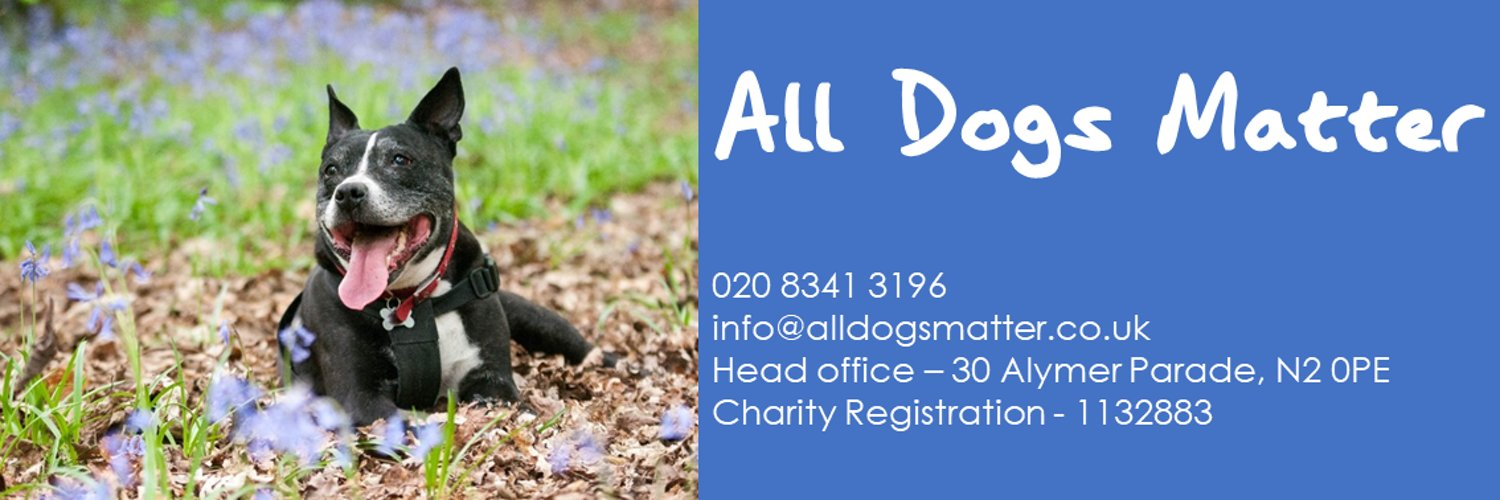 All Dogs Matter is a dog rescue and rehoming charity working in and around London to transform the lives of unwanted and abandoned dogs.