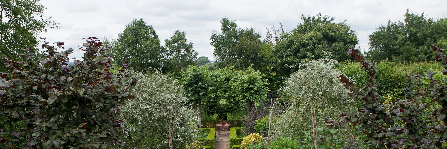 Gardeners World starts again tonight at 8.30 on BBC2. Be Happy. thetimes.co.uk/article/garden…