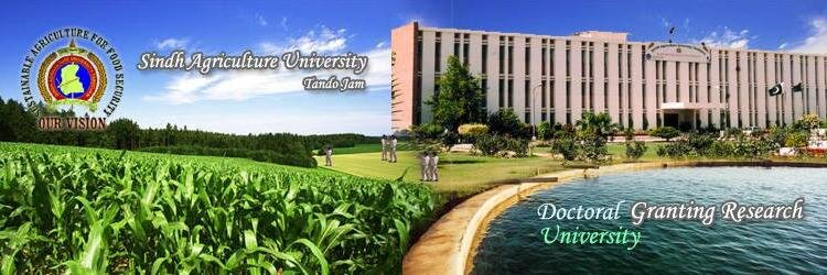 Sindh Agriculture University's official Twitter account
