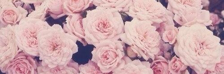 картинки для ютуба на шапку цветы