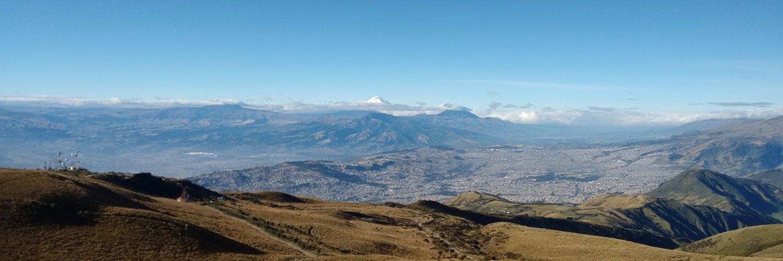 Director Metropolitano de Resiliencia - Chief Resilience Officer Quito