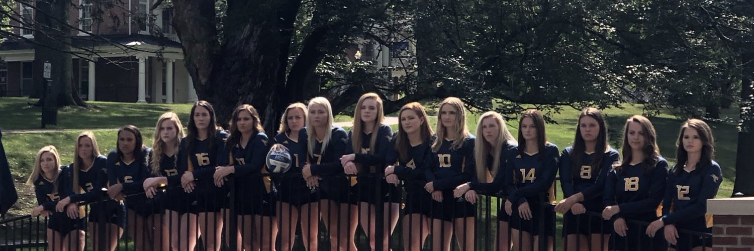 The official twitter page of Emory & Henry College Volleyball. #EHCVBWHATTT #GoWasps