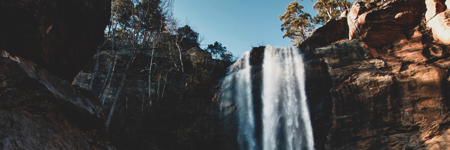 Toccoa Falls College's official Twitter account