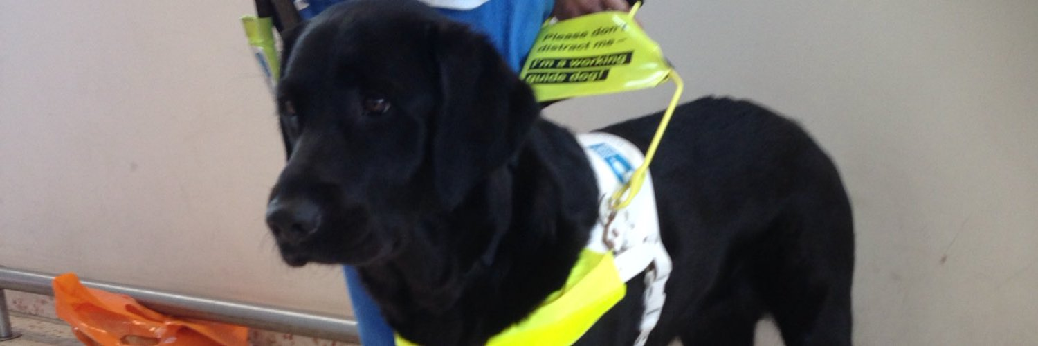 supporter and greatful to @guidedogs