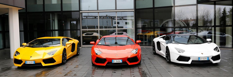 Luxury whips
