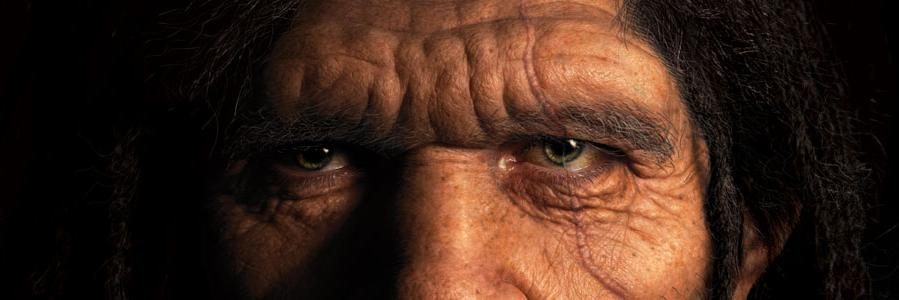Genetic research reveals Neanderthals could tolerate smoke, plant toxins phys.org/news/2020-11-g… via @physorg_com