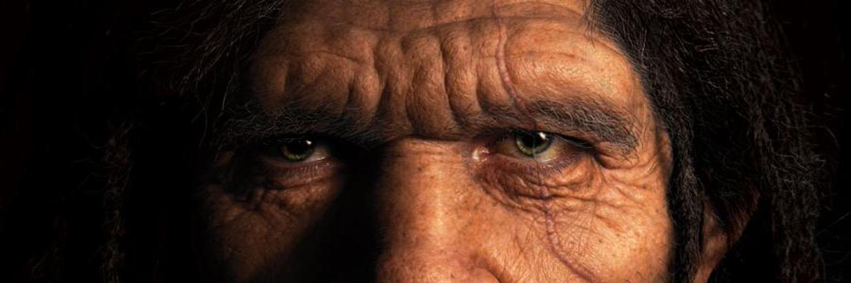 Human Origins, Hominin Fossils, Biological Anthropology #Evolution #Fossils #HumanEvolution #Science