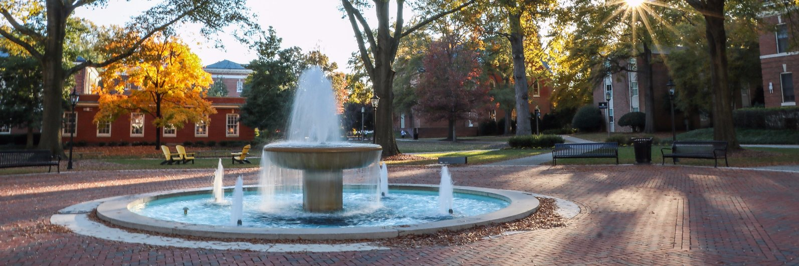 Randolph-Macon College's official Twitter account