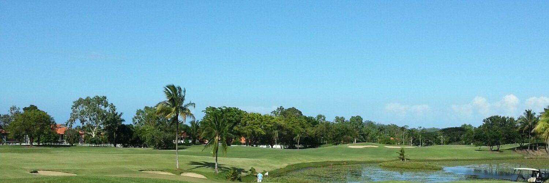 趣味ゴルフ 職業元ゴルフ