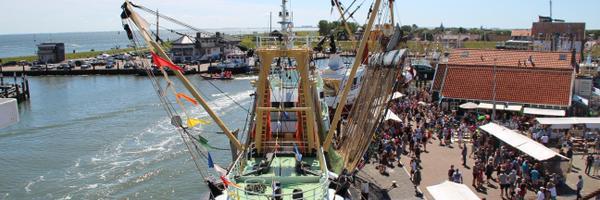 HavenVIStijn Texel weekje verzet naar 17 augustus