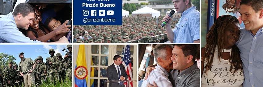 Pinzón Bueno