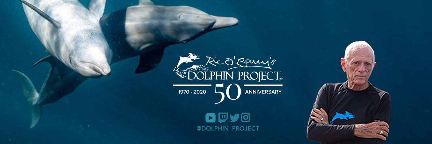 Dolphin Project (@Dolphin_Project) on Twitter banner 2011-09-23 18:54:16