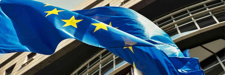 Renate WEBER Eurodeputata del Parlamento Europeo