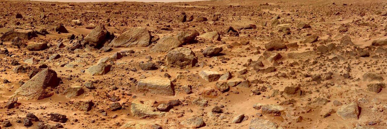 картошка на марсе фото подкорректировать внешность стереть