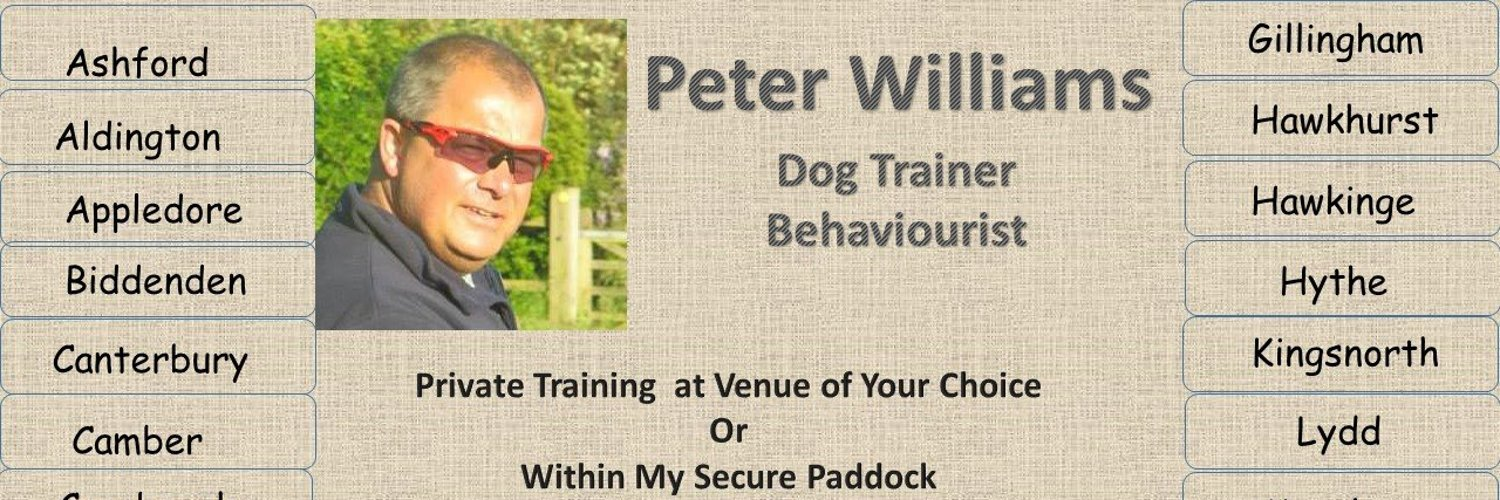 Paw Dog Training Newchurch