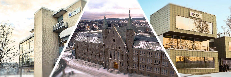 Norges teknisk-naturvitenskaplige universitet's official Twitter account