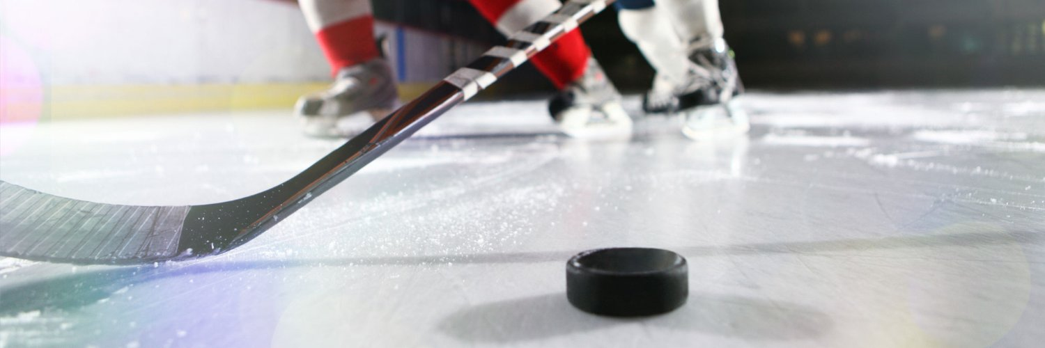 Betting on hockey is hard, go Bar South / NHL picks on the daily / NO COST / 2020 Record: 12-3 (+11.43U)