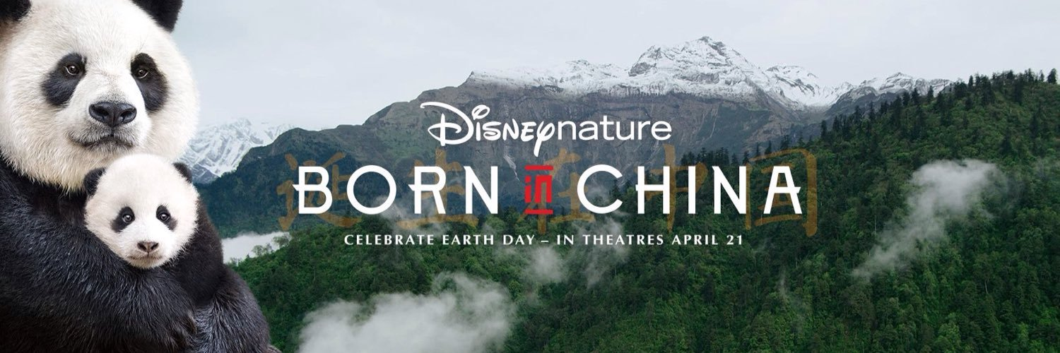 TV producer / director. #borninchina, a #disneynature film released in2017. Also #ghostofthemountains and #expedition china for Disney/Netflix. Currently NATGEO
