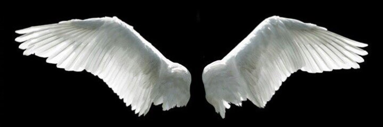 Картинки раскрытые крылья ангела
