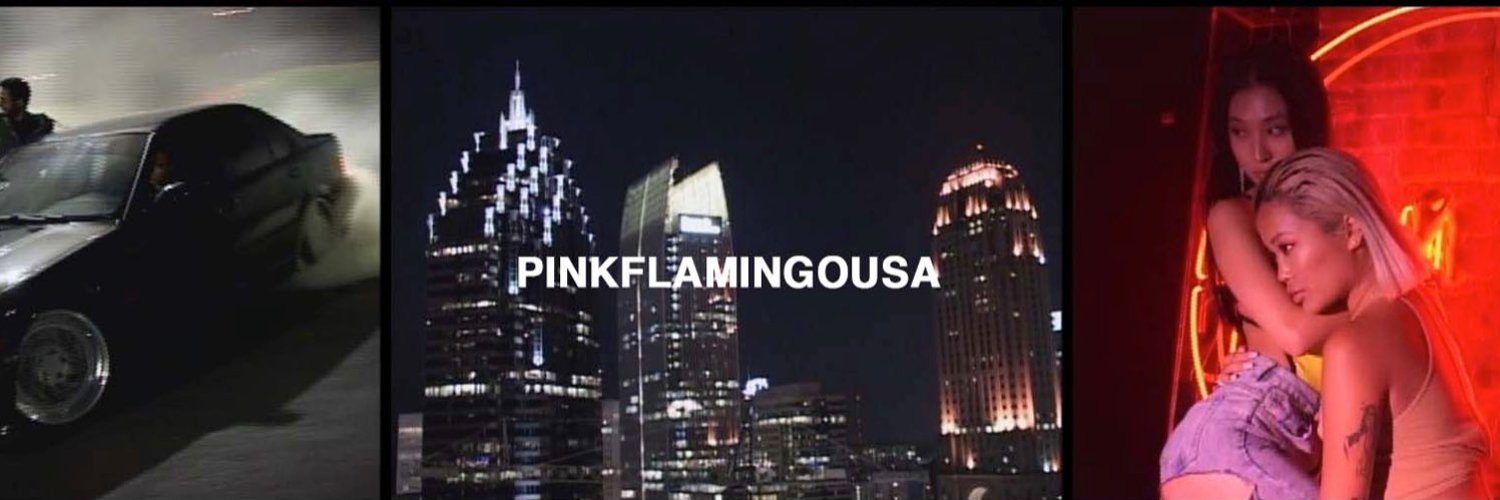 Documenting rare moments since 2014 instagram.com/pinkflamingousa / chris@pinkflamingousa.com