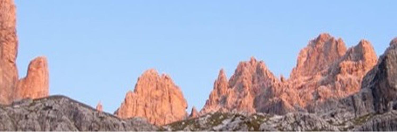 WALTER VIOLA Consigliere della Regione Trentino-Alto Adige