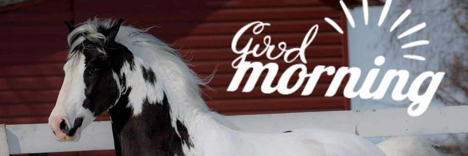 Live life to the fullest. Be kind to one another. May God bless everyone. I have A strong passion for Gypsy Vanner Horses.