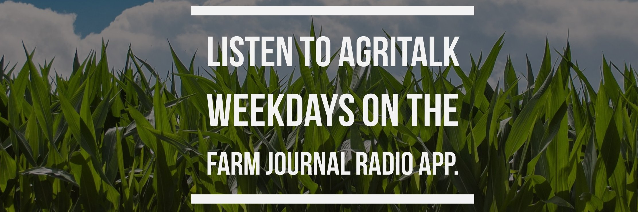 Today's 1st hour of #AgriTalk, @ChipFlory has to be away from the studio, but @DavisMichaelsen and @ClintonReports… https://t.co/3Wp52ovG60