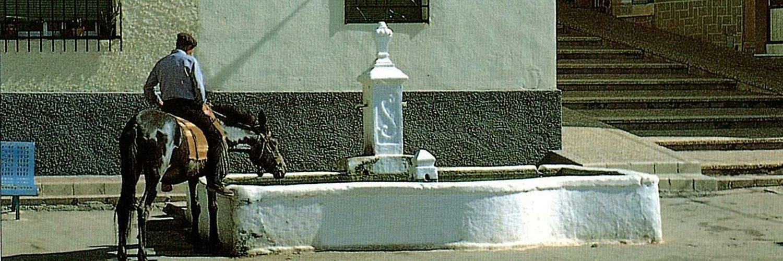 POVEDILLA - ALBACETE - ESPAÑA.