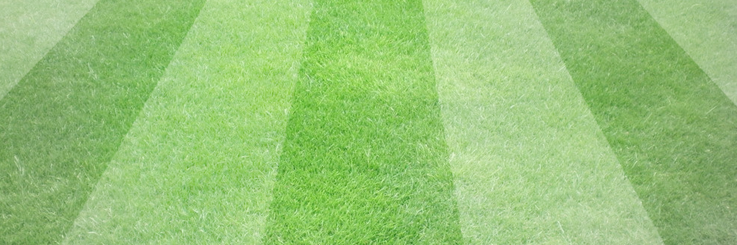 how to get rid of creeping bentgrass