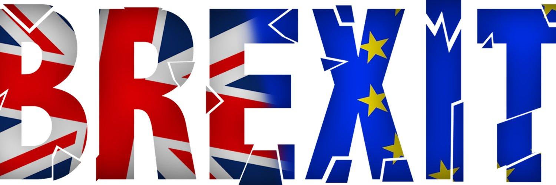 Brexit Twitter: Tommy Brexit (@Brexit4us)