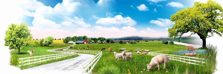 реклама фермы картинки комментаторы предположили