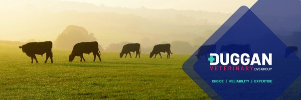 Duggan Veterinary Profile Banner