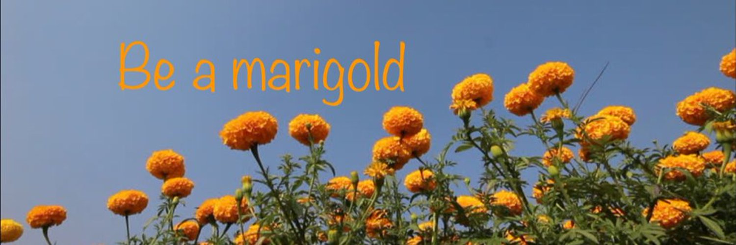 Mar Vista HS teacher, NGSS enthusiast, new teacher mentor, lesson study leader, mama and wife. Committed to being a marigold 🌼 cultofpedagogy.com/marigolds