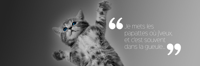 J'l'avais dit à Marine Le Pen de pas envoyer Nabilla à sa place... #2017ledebat #LeGrandDebat #Debat2017 #GrandDebat https://t.co/ozmegOeUWV