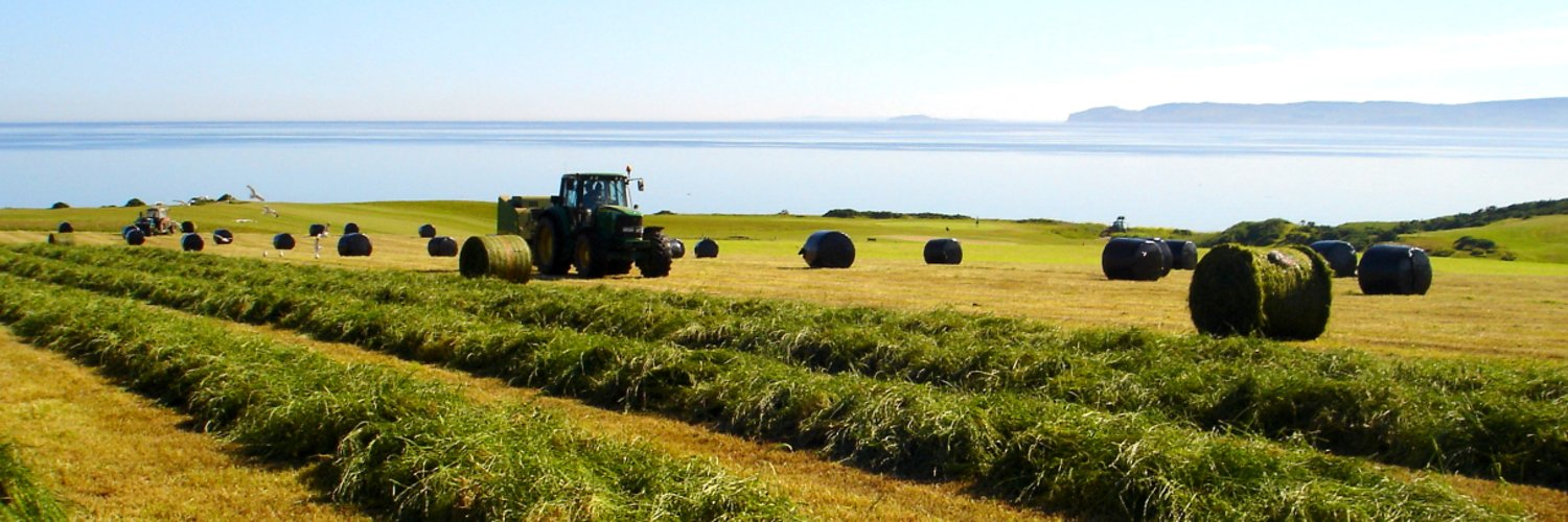 Bellevue is a beef and sheep farm located on the Isle of Arran. We have two holiday cottage and offer farm tours to give visitors an insight into island farming