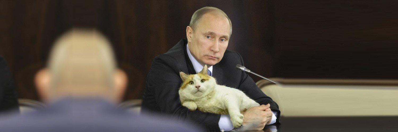 Яхты президента Путина (24 фото) » Триникси